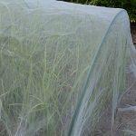 1.5m x 15m Mosquito Bug Insect Filet anti-oiseaux Barrière de chasse Store Filet de jardin pour protéger vos plantes Fruits Fleur de la marque Gardeningwill image 1 produit