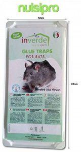 1 lot = 2 plaques plastique de glu anti rat et anti souris - NUISIPRO de la marque NUISIPRO image 0 produit