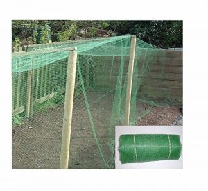 10 m x 4 m filet pour jardin – Robuste En Maille Fine (10 mm) – polypropolene : Crop Protection et légumes fruits, cages, bassin Protection, de nombreux autres usages. Utilisé par professionnel Crèches de la marque Ashnook image 0 produit