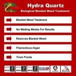 1Kg Quitar Filamentosas Algas Hydra Quartz, Algas Filamentosas, manta-mala hierba Eliminador de la marque HYDRA image 3 produit