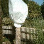 20m² de protection hivernale hiver non-tissé Protection anti-gel 80g 1,6m de large de la marque Aquagart image 2 produit