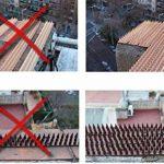 3m pics anti oiseaux et anti chats - 6 pcs de 50cm polypropylène anti UV (marron) de la marque Fotona image 5 produit