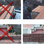 3m pics anti oiseaux et anti chats - 6 pcs de 50cm polypropylène anti UV -Transparente- de la marque Bird-Tech image 3 produit