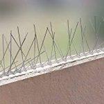 5 mètre pics anti pigeons 1 rangées V2A - solution de qualité pour contrôle des oiseaux base d'acier inoxidable de contrôle des oiseaux de la marque Pestsystems image 4 produit