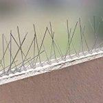 5 mètre pics anti pigeons 2 rangées en polycarbonate - solution de qualité pour contrôle des oiseaux de la marque Pestsystems image 4 produit