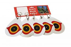 5PCS Répulsifs Inverseurs d'oiseaux Double-face réfléchissants d'éloigner les oiseaux en forme d'œil prédateur de la marque foci cozi image 0 produit