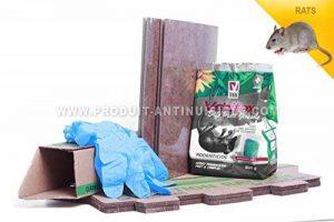 aedes lodi vebi Pack spécial rats pack anti rats - raticide- pâte fraiche - poste d'appâtage - plaques de glue de la marque aedes lodi vebi image 0 produit
