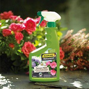 ALGOFLASH NATURASOL BIOSAPRET750A Savon Noir - Prêt à l'Emploi 750 ml, Vert, 12 x 7 x 26 cm de la marque ALGOFLASH NATURASOL image 0 produit