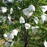 Anpatio Lot de 2015,2x 25,4cm Fruits Saver Sacs de protection de filet de jardin Fly Bug Control Keep Out Off Oiseaux, cerf et d'autres insectes nuisibles à l'Écart du Patio cultures de la marque Anpatio image 2 produit
