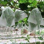 Anpatio Lot de 2015,2x 25,4cm Fruits Saver Sacs de protection de filet de jardin Fly Bug Control Keep Out Off Oiseaux, cerf et d'autres insectes nuisibles à l'Écart du Patio cultures de la marque Anpatio image 1 produit