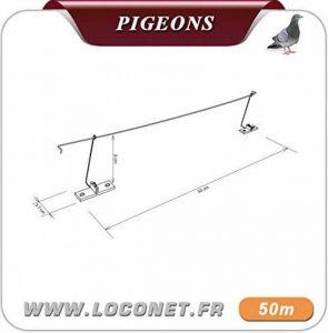 Anti Pigeon DT Cable Bird 1 de la marque dt-groupe image 0 produit