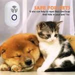 anti souris TOP 11 image 4 produit