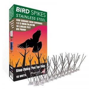Aspectek anti-oiseaux en acier inoxydable 10 pieds (3 mètres) Dispositif dissuasif parfait pour les oiseaux (sans colle) de la marque Aspectek image 0 produit