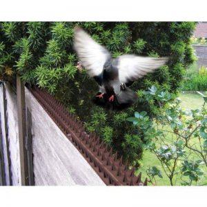 barrière anti pigeon TOP 0 image 0 produit