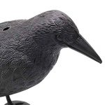 Bird Répulsif Corbeau avec ailes propagation d'extérieur Pest Control Leurre pigeon Faux Effet dissuasif Répulsif de la marque Lembeauty image 2 produit