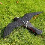 Bird Répulsif Corbeau avec ailes propagation d'extérieur Pest Control Leurre pigeon Faux Effet dissuasif Répulsif de la marque Lembeauty image 3 produit