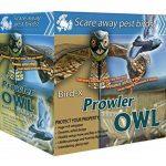 Bird-X Leurre pour effrayer les prédateurs en forme de chouette de la marque Bird-X Inc image 3 produit