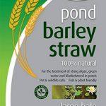 Blagdon 1054669 Paille d'Orge d'Etang Large Bale de la marque Blagdon image 1 produit