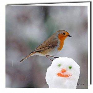 Bonhomme de neige et cartes de v?ux Motif rouge-gorge avec son ambiphonique Play superbe oiseau lorsque blanc ouvert à l'intérieur, idéal pour une coupe très unique Carte de Noël avec enveloppes incluses de la marque Really-Wild-Cards image 0 produit
