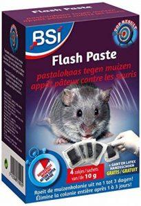 BSI 61999 Flash Paste Micro-Encapsulée, Bleu, 40 g de la marque BSI image 0 produit
