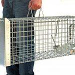cage piège TOP 10 image 3 produit