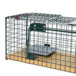cage piège TOP 4 image 2 produit