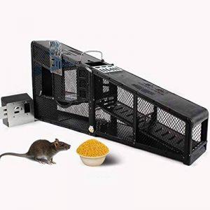 Cage Trap - Piège À Cage En Direct Pour Animaux Débarrassez-Vous De Souris, Capture De Rongeurs, Piège À Cage Professionnel de la marque SSDM image 0 produit