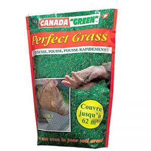 Canada Green 08108 Perfect Grass Gazon de Jardin Vert 1 kg de la marque Canada-Green image 0 produit