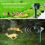 chasser les oiseaux TOP 10 image 4 produit