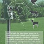 chasser les oiseaux TOP 11 image 3 produit