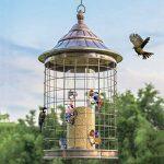comment éloigner dés oiseaux TOP 11 image 1 produit