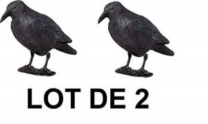 corbeau anti pigeon TOP 8 image 0 produit