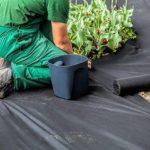 Couvre-sol de 150 g/m², recouvrant les mauvaises herbes de jardin. Dimensions: 1 m x 25 m. de la marque Qualitätsvlies trading-point24 Denise Richter image 1 produit