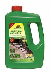 destruction mauvaises herbes TOP 11 image 0 produit