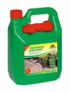 destruction mauvaises herbes TOP 13 image 0 produit