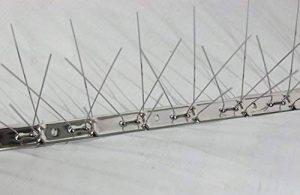 Dissuaders pour oiseaux EN ACIER INOXYDABLE 78 broches de longueur 100 cm (25) de la marque FERRITALIA image 0 produit
