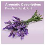 doTERRA Lavender Essential Oil 15 ml by doTERRA de la marque doTerra image 2 produit
