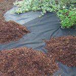 Désherbant indéchirable 80g/m² pour écorce Galets, anti-UV 30m x 2m de la marque Plant-Protex/Texton image 2 produit