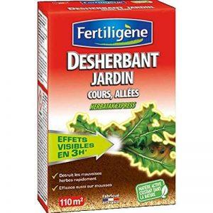 Désherbant Jardin Cours Allées 250ml Fertiligène de la marque Fertiligène image 0 produit