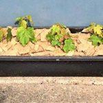 désherbant naturel pour mauvaises herbes TOP 13 image 3 produit