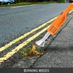 Désherbeur Électrique NASUM Brûleur de Mauvaises Herbes/Brûleur à Gaz 2000W Temperature Maximale 650?, Respectueux de l'Environnement, Protéger le Jardin de la marque NASUM image 4 produit