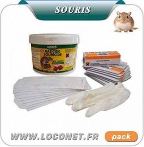 DT-GROUPE Pack spécial souris pack anti souris - plaques de glue - souricide - pâte fraiche - postes d'appâts de la marque Parasitox image 0 produit
