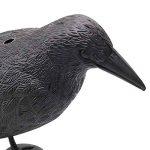 effrayer oiseaux potager TOP 5 image 2 produit