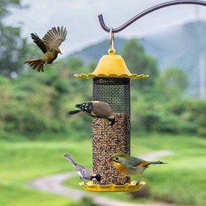 eloigner les oiseaux du toit TOP 14 image 0 produit