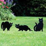 Ensemble PestExpel® de 3 insectes humains pour les rongeurs d'oiseaux à chat, jardin anti-répulsif de la marque PestExpel image 1 produit