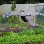 épouvantail oiseaux TOP 0 image 3 produit