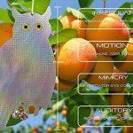 Erkan Bird Répulsif Oiseaux Scare dissuasif appareils 39,4cm réfléchissant à suspendre chouette avec cloches Pest Control (lot de 3) de la marque ErKan image 1 produit
