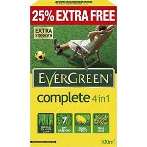 EverGreen Complete Produit de traitement de pelouse 80m² de la marque Evergreen image 0 produit