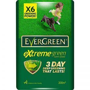 EverGreen Fertilisant de gazon 200 m² de la marque Evergreen image 0 produit