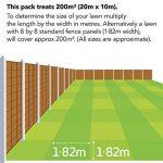 EverGreen Traitement 4 en 1 pour pelouse 200m² de la marque Evergreen image 1 produit
